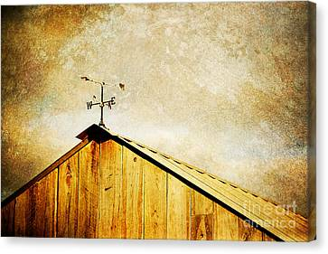 Weathervane Canvas Print by Joan McCool