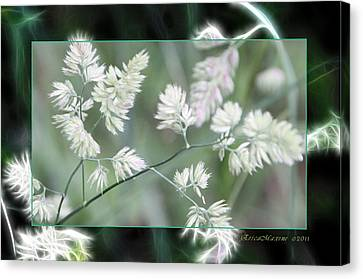 Weeds Canvas Print by EricaMaxine  Price