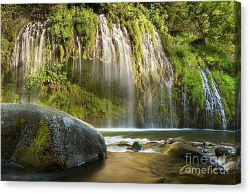 Long Bed Canvas Print - Weeping Wall by Keith Kapple