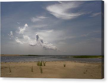 Canvas Print featuring the photograph Wellfleet Shore by Michael Friedman