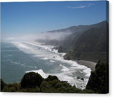 West Coast - South Island 2 Canvas Print by Peter Mooyman