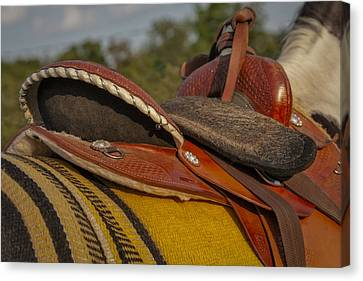Stallion Canvas Print - Western Saddle by Susan Candelario