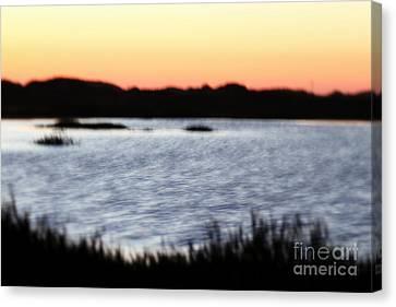 Canvas Print featuring the photograph Wetland by Henrik Lehnerer