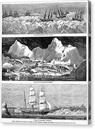 Whaling Fleet In Ice, 1876 Canvas Print by Granger