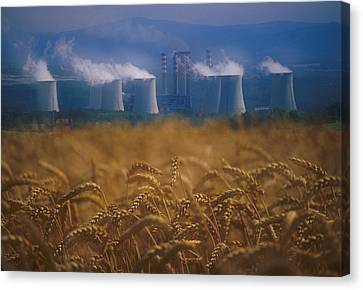 Wheat Fields And Coal Burning Power Canvas Print by David Nunuk