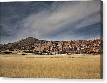 Canvas Print featuring the photograph Wheatfield Zion National Park by Hugh Smith