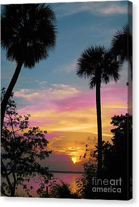 When Day Is Done Canvas Print by Judy Via-Wolff