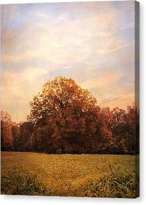 Where Memories Are Made Canvas Print by Jai Johnson