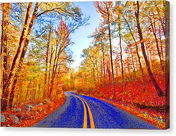 Where The Road Snakes Canvas Print by Douglas Barnard