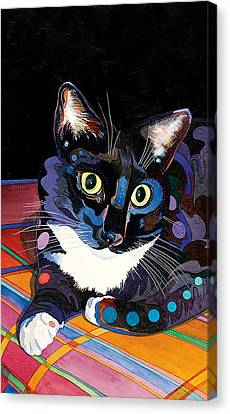 Whiskers Canvas Print by Bob Coonts