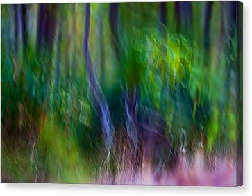 Whispers On The Wind Canvas Print