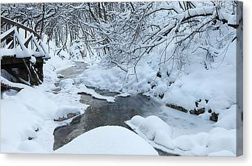 Whist Of December Canvas Print by Ferenc Farago - Photograph Art
