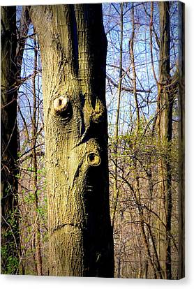 Whistling Tree Canvas Print by Mindy Newman
