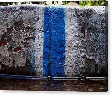 Whit Blue Curb Canvas Print by Ludmil Dimitrov