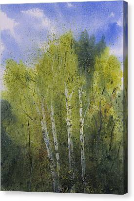 White Birch Trees Canvas Print by Debbie Homewood