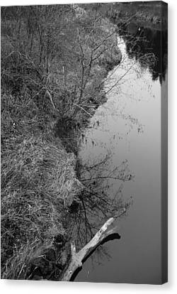 White Branch Riverside  Canvas Print by Kathleen Grace