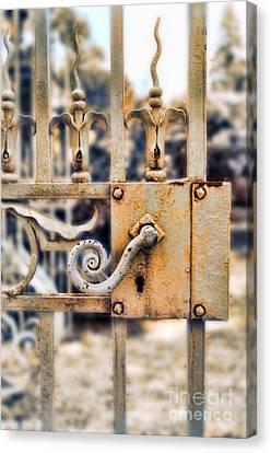 White Iron Gate Details Canvas Print by Jill Battaglia