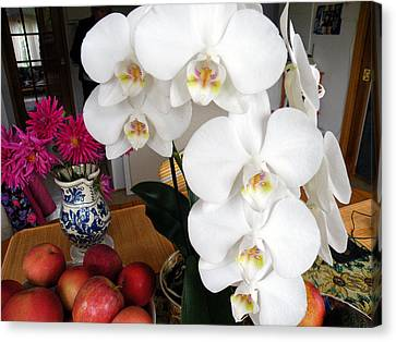 Canvas Print featuring the digital art White Orchid by Vicky Tarcau