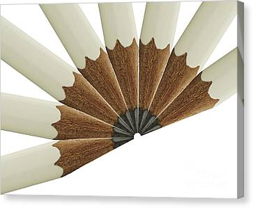 White Pencil Fan Canvas Print by Blink Images