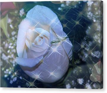 Canvas Print featuring the photograph White Rose by Michelle Frizzell-Thompson
