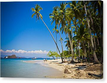Jaco Canvas Print - White Sand Beach by Anthony Doudt