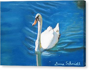 White Swan At Lake Eola Of Orlando Canvas Print