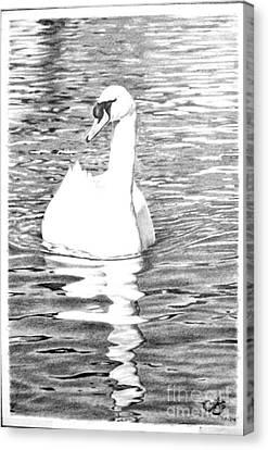 White Swan Canvas Print by Muna Abdurrahman