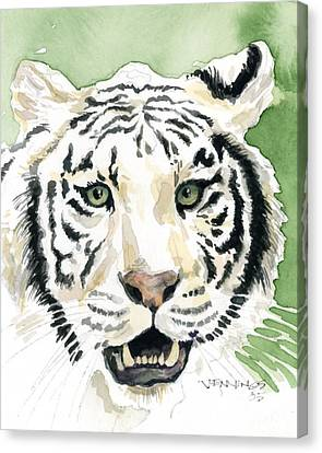 White Tiger Canvas Print by Mark Jennings