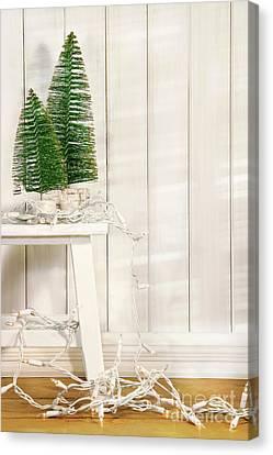 White Tree Lights  Canvas Print by Sandra Cunningham