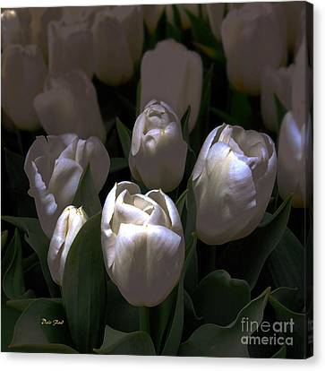 White Tulips Canvas Print by Dale   Ford