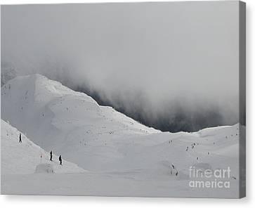 Whiteout Whistler Canvas Print by Don F  Bradford