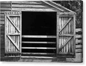 Who Opened The Barn Door Canvas Print by Teresa Mucha