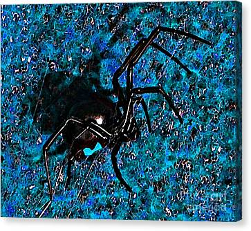 Wicked Widow - Blue Canvas Print by Al Powell Photography USA