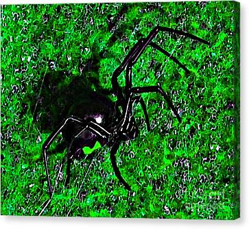 Wicked Widow - Green Canvas Print by Al Powell Photography USA