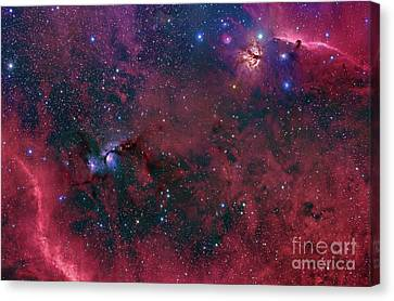 Widefield View In The Orion Canvas Print