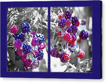 Wild Berries Diptych Canvas Print by Steve Ohlsen