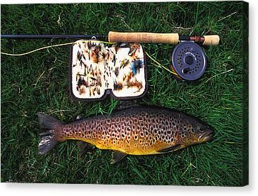 Wild Brown Trout And Fishing Rod Canvas Print by Axiom Photographic