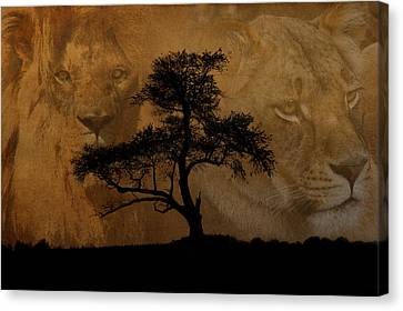 Wild Canvas Print by Cindy Haggerty