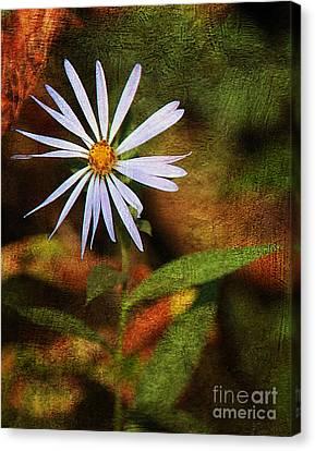 Wild Flower Canvas Print by Billie-Jo Miller