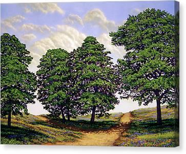 Wild Flower Path Canvas Print by Frank Wilson