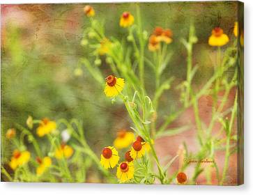Canvas Print featuring the photograph Wild Flowers by Joan Bertucci
