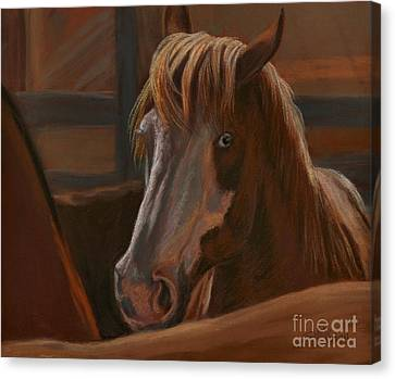 Wild Hearts Will Not Be Broken Canvas Print
