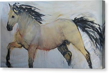 Wild Horse 1 2012 Canvas Print