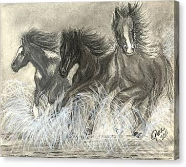 Wild Horses Run Canvas Print by Gina Cordova