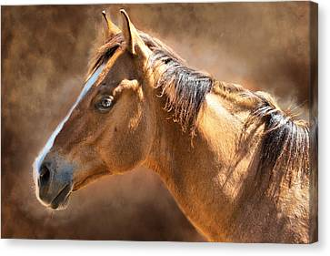 Canvas Print featuring the digital art Wild Mustang by Mary Almond
