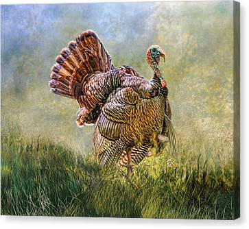 Canvas Print featuring the digital art Wild Turkey by Mary Almond