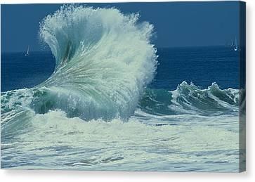 Wild Wave Canvas Print