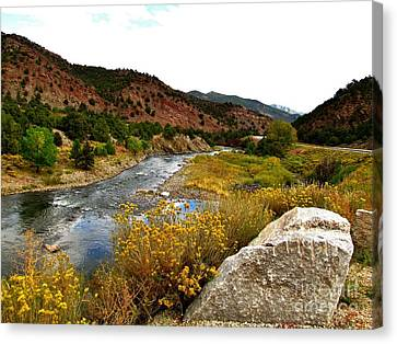 Wilderness Serenity Canvas Print by Marilyn Smith