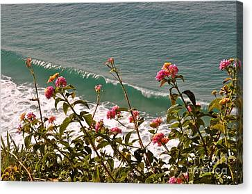 Canvas Print featuring the photograph Wildflowers And Waves by Johanne Peale