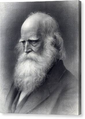 William Cullen Bryant 1794-1878 Was An Canvas Print by Everett